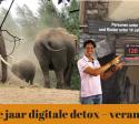 Digital detox 2018